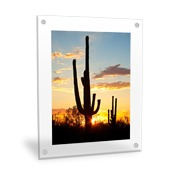 Vertical 16x20 Clear Frame Wall Art with Stand Offs