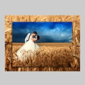 16x20 Landscape Double Layer Wall Art