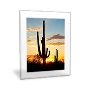 Vertical 16x20 Clear Frame Wall Art