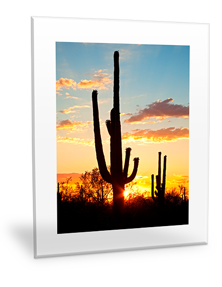 Clear Frame Acrylic Print Wall Art